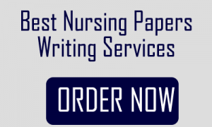 best nursing papers writing services